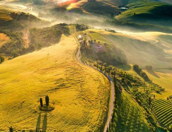 Tour de vinos y campos de la Toscana