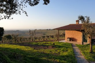 wine and country in the roman hills