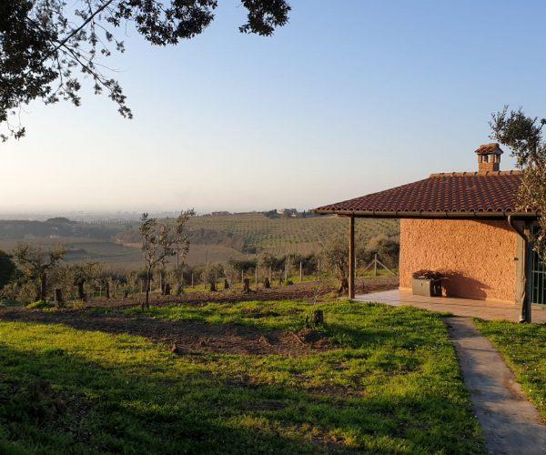 vino y país en las colinas romanas