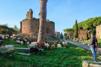 Appian Way Bike Tour